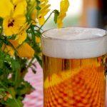 Studiu: Polifenolii din bere pot contribui la echilibrul florei intestinale
